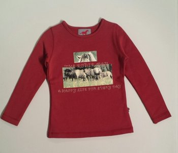 Red Horse sweater rood